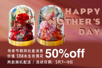 Valentine's Day Preserved Roses (Mother's Day Special 50% off)
